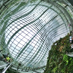 Cloud Forrest in Garden by the Bay is one amazing art, science and natural history museum.