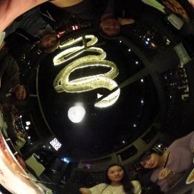 #sakura3d 就是這一鍋 #theta360