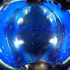 2017.11.12 海遊館・アクアゲートにて #海遊館 #rain3d #theta360