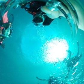 2020/11/10 かっちゃま #padi #diving #フリッパーダイブセンター #平沢 #theta #theta_padi #theta360 #群馬 #伊勢崎 #ダイビングショップ #ダイビングスクール #ライセンス取得