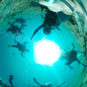2020/08/30 大瀬崎、先端 #padi #diving #フリッパーダイブセンター #大瀬崎 #theta #theta_padi #theta360 #群馬 #伊勢崎 #ダイビングショップ #ダイビングスクール #ライセンス取得