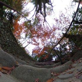 箱根板橋の松永記念館から老欅荘へ続く階段 #theta360