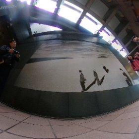 Museum Trip, Tokyo 大学の写真のクラスで、写真美術館へ。 #theta360