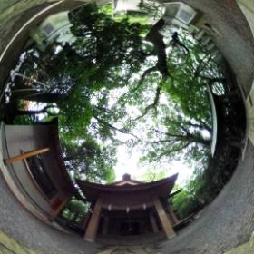 山王神社の社殿前で撮影しました。
