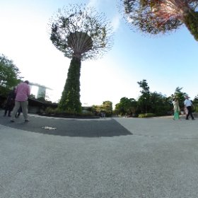 Gardens by the bay, Singapore. #RVRPRO #theta360