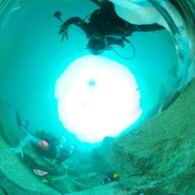 2020/09/26-27 OWD海洋実習 #padi #diving #フリッパーダイブセンター #大瀬崎 #theta #theta_padi #theta360 #群馬 #伊勢崎 #ダイビングショップ #ダイビングスクール #ライセンス取得