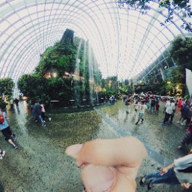 Cloud Forest #theta360