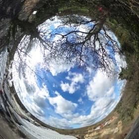 #Ightham Quarry Cliff Edge