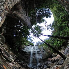 Blackfellow Falls in Springbrook National Park