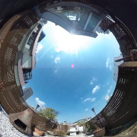 神宮前2丁目HOUSE ルーフテラス http://www.axel-home.com/009924.html  #theta360