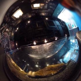 古代魚、#京都水族館 #theta360