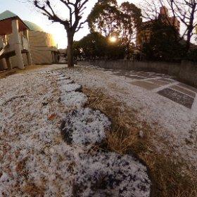 うっすらと白い雪化粧に包まれた松山市のコミセンの朝。 お昼頃には溶けてしまうんだろうなぁ。 #theta360
