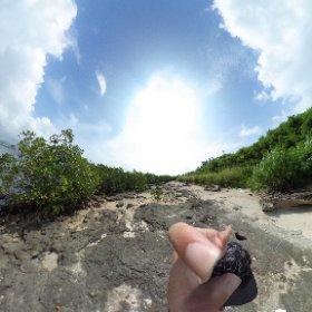 ベカナ島、VR #theta360