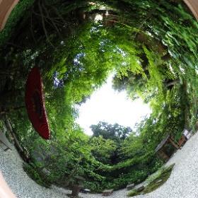 Kamakura Ichjo Ekansanso garden  鎌倉の一条恵拝観山荘 お庭 ドイツ式カイロプラクティック逗子整体院 SINCE 1994 www.zushi-seitai.com