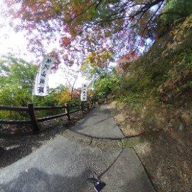 唐沢山神社の紅葉 #momiji3d #theta360