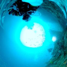 2020/12/12 田子・太根 #padi #diving #フリッパーダイブセンター #田子 #theta #theta_padi #theta360 #群馬 #伊勢崎 #ダイビングショップ #ダイビングスクール #ライセンス取得