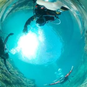 2021/02/10 福浦、イソギンチャク畑 #padi #diving #フリッパーダイブセンター #福浦 #theta #theta_padi #theta360 #群馬 #伊勢崎 #ダイビングショップ #ダイビングスクール #ライセンス取得