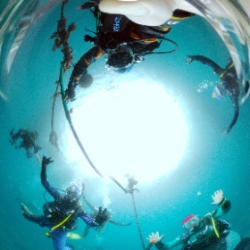 2021/03/28 雲見 #padi #diving #フリッパーダイブセンター #雲見 #theta #theta_padi #theta360 #群馬 #伊勢崎 #ダイビングショップ #ダイビングスクール #ライセンス取得 #padiライフ