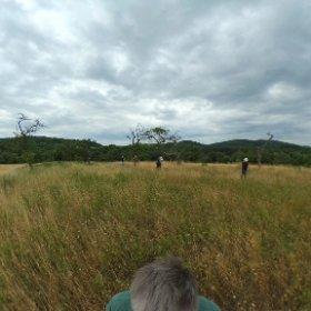 Fotoworkshop Inspiration Landschaft mit rené reiter von fotogena Akademie #theta360 #theta360de
