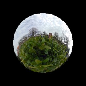 Like a half moon 🌙