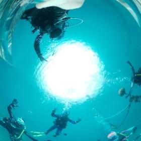 2020/06/02雲見 #padi #diving #フリッパーダイブセンター #雲見 #theta #theta_padi #theta360 #群馬 #伊勢崎 #ダイビングショップ #ダイビングスクール #ライセンス取得