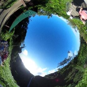 360 Photo 20 of our #HawaiiTrip January 1, 2020. Akaka Falls overlook (near Hilo) #RememberingJeri  #theta360