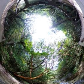 淀川  屋久島を自由に旅する GREEN MOUNT  #theta360