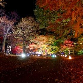森林公園「紅葉見ナイト」閉園まで楽しみました #theta360