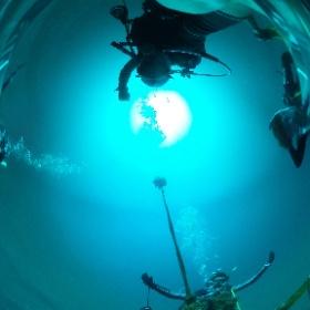 2019//10/05-06 大瀬崎・OWD&AOW海洋実習 #padi #diving #フリッパーダイブセンター #大瀬崎 #theta #theta_padi #theta360 #群馬 #伊勢崎 #ダイビングショップ #ダイビングスクール #ライセンス取得