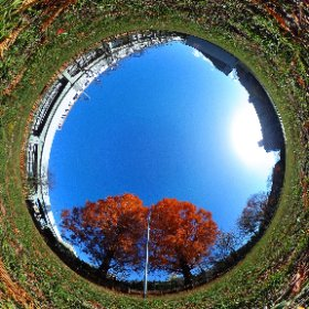 360.kudo.gr.jp #Metasequoia #Koganei #Tokyo #Japan #RICHOH #THETA #360 #Panorama #park #autumn #TokyoSuburb #Suburb  #蛇の目跡地 #ジャノメ #メタセコイア #秋 #紅葉 #公園 #広場 #小金井市 #小金井 #東京郊外  2015/12/11 #theta360