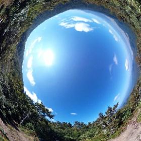 銀杏峰前山(福井) 360°パノラマ #theta360