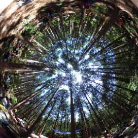この全天球写真は「森と踊る木こりフェス2018@高尾」の一部です。このイベントの紹介記事を以下のサイトで公開しています。 http://jilays.com/event/ev0007/