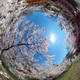 上田城跡公園 #theta360