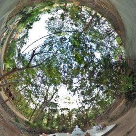 วัดศรีสว่างวัฒนา (Wat Sri Swang Wattana) ตำบลหนองป่าก่อ อำเภอดอยหลวง จังหวัดเชียงราย 57110 @ http://www.Wat.today/ @ http://www.วัด.ไทย/