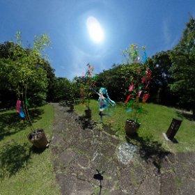 七夕!願い事叶うといいな。 今日は雨だけど、天気が良かった時の写真 雨やんでほしい。 #miku360   #theta360