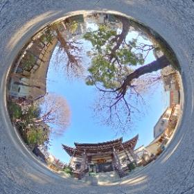 養源寺 photo by MUSBIC  http://musbic.net    #theta360