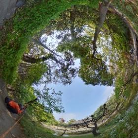 伝法院の庭園でシータ。 今、公開してるんですよ、伝法院庭園。 #浅草 #伝法院 #theta360