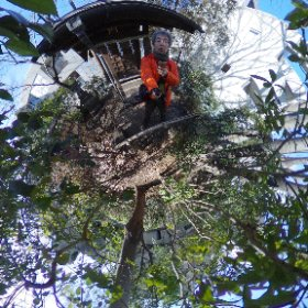 今日の墳頂シータは猿楽塚から。 #猿楽塚 #代官山 #theta360