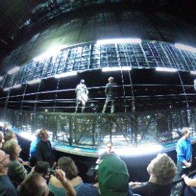 U2 Copenhagen Wild Horses 360 #U2eiTour
