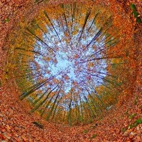 #autumn #ontheroad #wdrodze #spheric360 #Filplast  #theta360