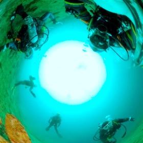 2021/03/13 静浦、沈船 #padi #diving #フリッパーダイブセンター #静浦 #theta #theta_padi #theta360 #群馬 #伊勢崎 #ダイビングショップ #ダイビングスクール #ライセンス取得