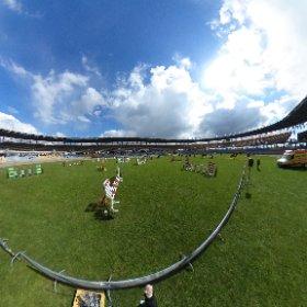 Konie na stadionie  #theta360