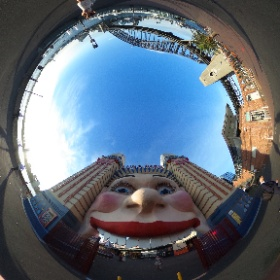 Oh look Suji's only 1 photo for the day.  #theta360