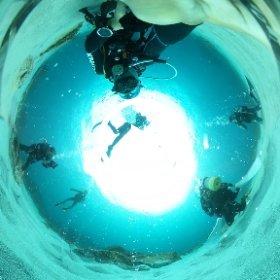 2020/09/19 式根島・御釜湾 #padi #diving #フリッパーダイブセンター #式根島 #theta #theta_padi #theta360 #群馬 #伊勢崎 #ダイビングショップ #ダイビングスクール #ライセンス取得 #LEFEET #うみがめ #海中温泉