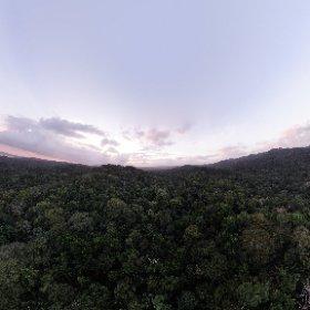 sunset above the rainforest #theta360