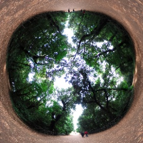 #capodimonte #bosco #allaroundyoureyes #photo360 #theta360 #theta360it