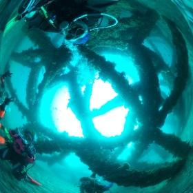2019/04/16 岩・トライアングル #padi #diving #フリッパーダイブセンター #岩 #theta #theta_padi #theta360