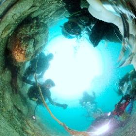 2021/07/27 獅子浜 #オオウミウマ #padi #diving #フリッパーダイブセンター #大瀬崎 #theta #theta_padi #theta360 #群馬 #伊勢崎 #ダイビングショップ #ダイビングスクール #ライセンス取得 #padiライフ