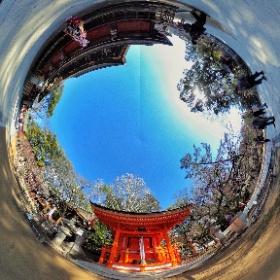 Geisha at Kitano Tenmangu  #sakura3d  #theta360