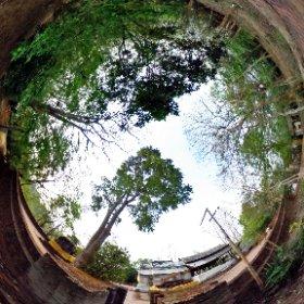 วัดพระธาตุภูเข้า (ปูเข้า) [Wat PraThat PuKhao] ตั้งอยู่ หมู่ที่ 1 ตำบลเวียง อำเภอเชียงแสน จังหวัดเชียงราย 57150 @ http://www.Wat.today/ @ http://www.วัด.ไทย/
